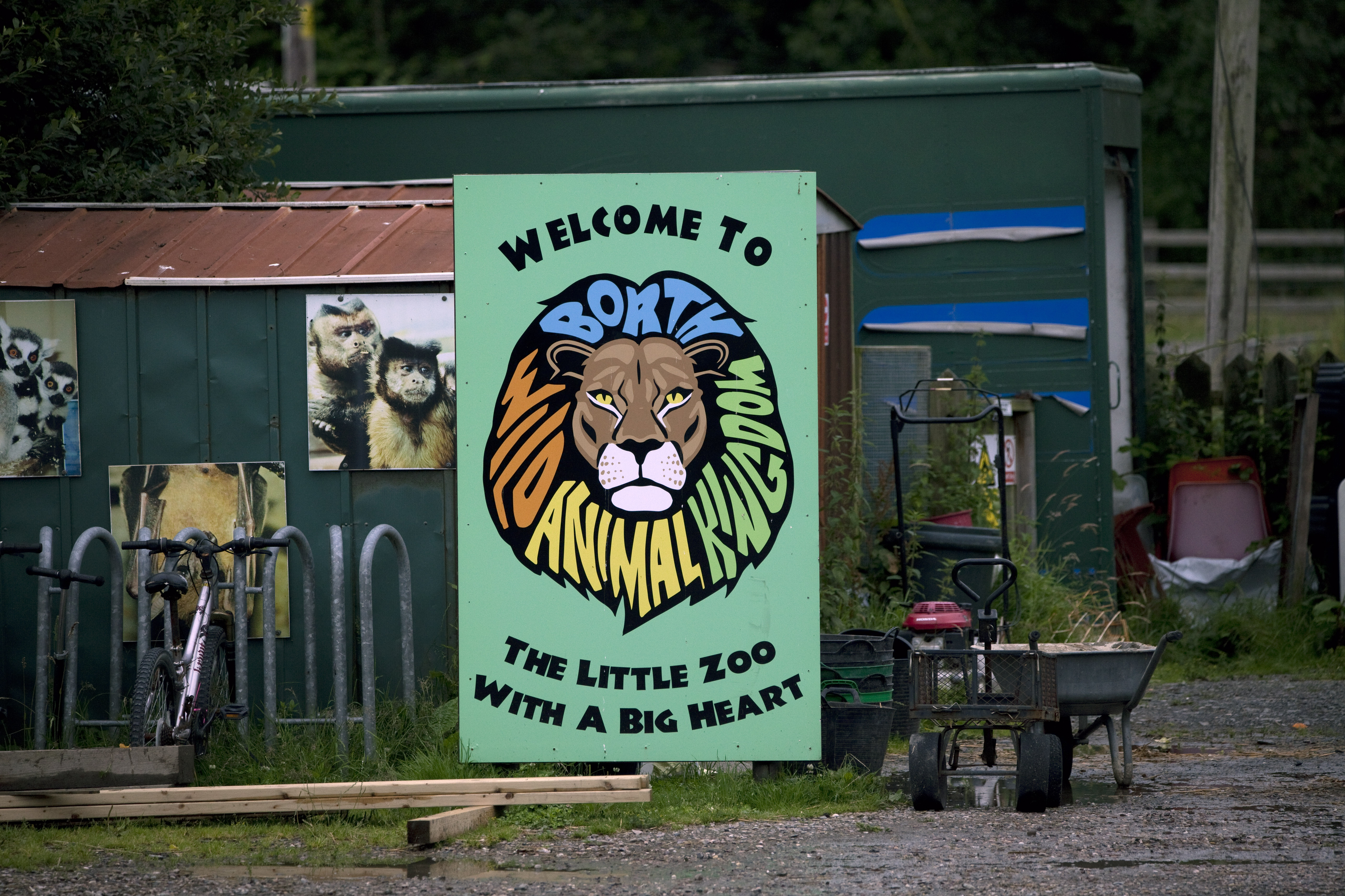 BREAKING: Borth Zoo Set to Permanently Close!