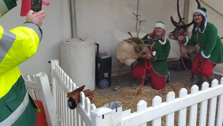 Miserable reindeer at a miserable festive event