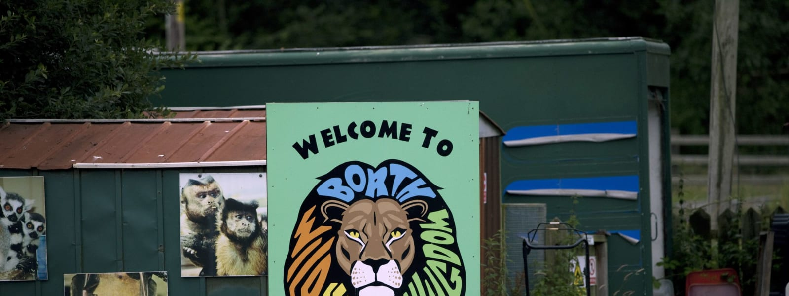 Borth Zoo Given 42 Days to Pay Huge Tax Bill