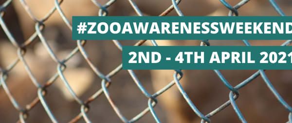 Zoo Awareness Weekend 2021