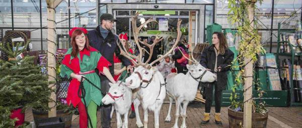 TAKE ACTION AGAINST REINDEER EXPLOITATION